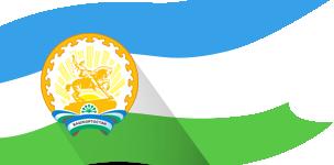 Программе государственных гарантий оказания гражданам башкортостан й медицинской помощи